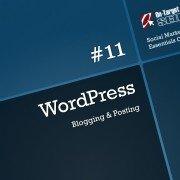 Blogging & Posting